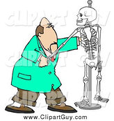 Clip Art of a White Male Chiropractor Practicing Procedures on a Skeleton by Djart