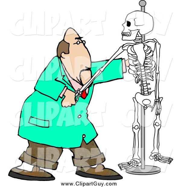 Clip Art of a White Male Chiropractor Practicing Procedures on a Skeleton