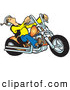 Clip Art of ABiker Dude Riding a Powerful Orange Chopper by Snowy